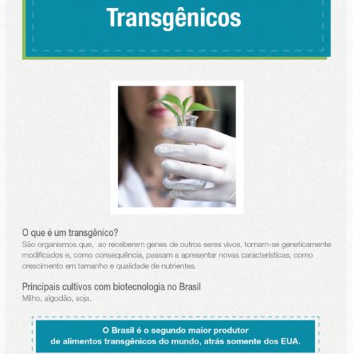 Mito ou verdade: alimentos transgênicos