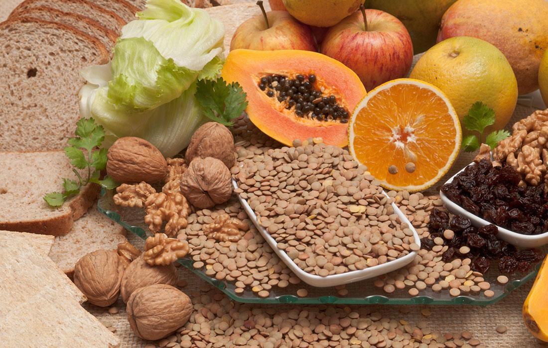 A importância das fibras na Terapia Nutricional Enteral