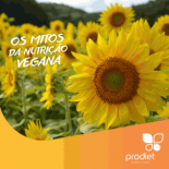 Post_Origem_Termo_Vegan1-280x280