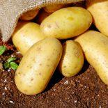 Desmistificando os carboidratos: 4 fatos que você precisa saber
